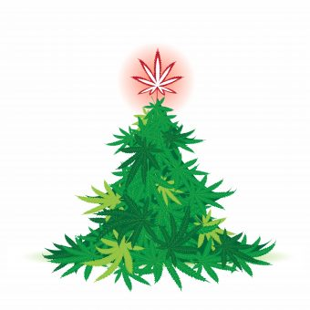 10 reasons why CBD is the Perfect Holiday Gift